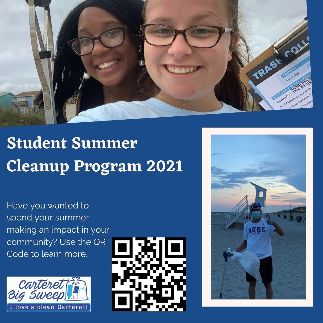 Solo Student Summer Cleanup (1)